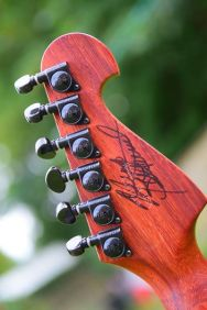 Washburn N4 Nuno Bettencourt padauk For Sale UK (3)