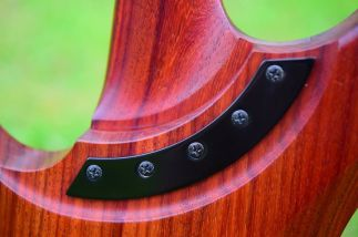 Washburn N4 Nuno Bettencourt padauk For Sale UK (5)